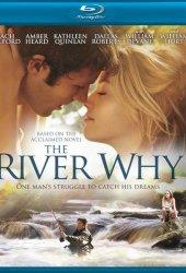 Река-вопрос  (2010)