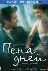 Пена дней (2013)