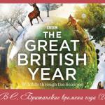 BBC. Британские времена года (2013)