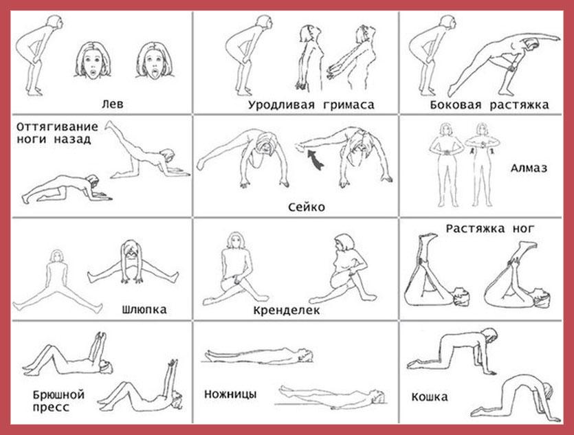 Основной комплекс упражнений бодифлекс
