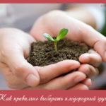 Как правильно выбирать плодородный грунт