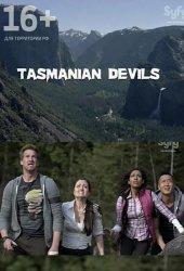 Тасманские дьяволы (2013)