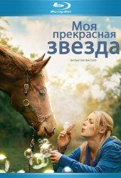 Моя прекрасная звезда (2012)