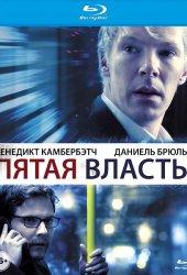 Пятая власть  (2013)