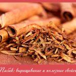 Табак: выращивание и полезные свойства